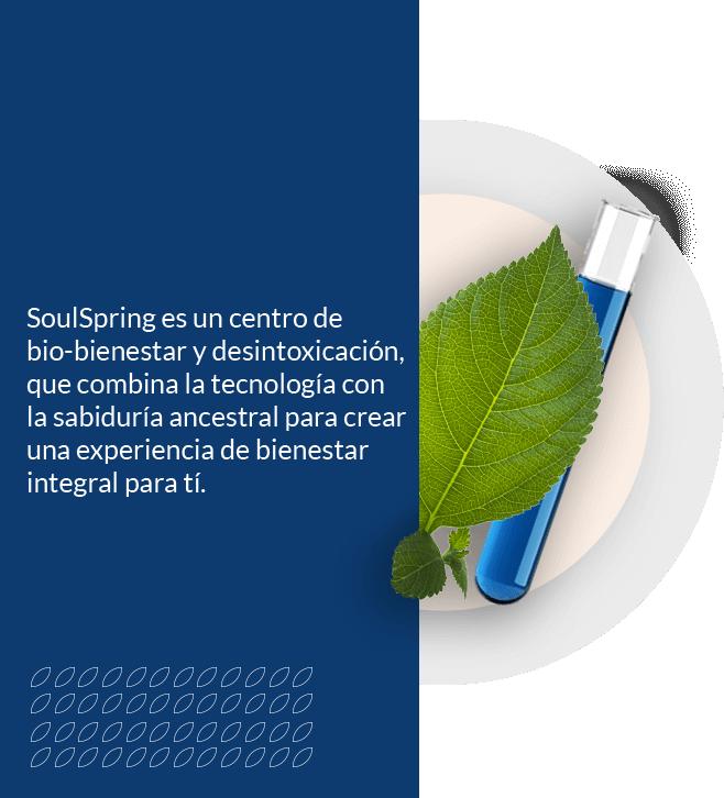SoulSpring es un centro de biobienestar y desintoxicación, que combina la tecnología con la sabiduría ancestral para crear una experiencia de bienestar integral para ti.